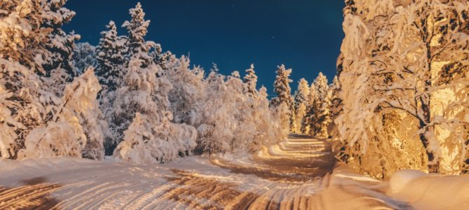 Lapland & Scandinavia Travel Specialists Homeworking generous commission (PTR 3486)